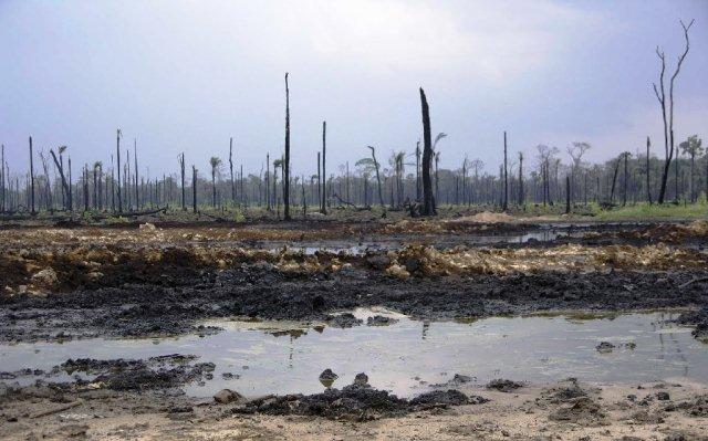 Environmental Crisis at the Niger Delta