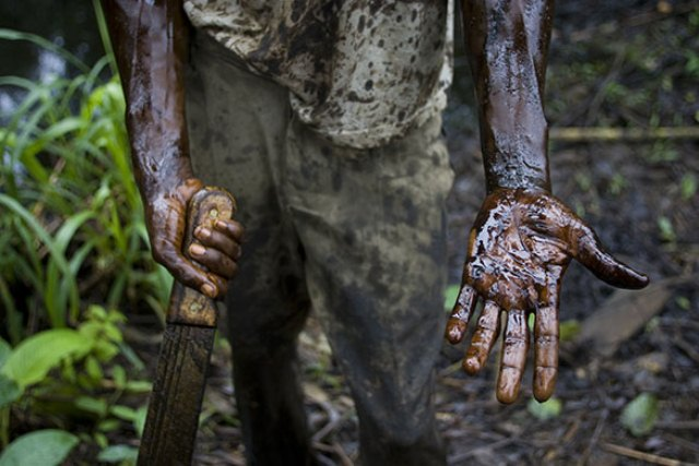 Environmental Problem of the Niger Delta