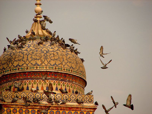 The Dome of Wazir Khan Mosque - Lahore. Image: Pak Positive