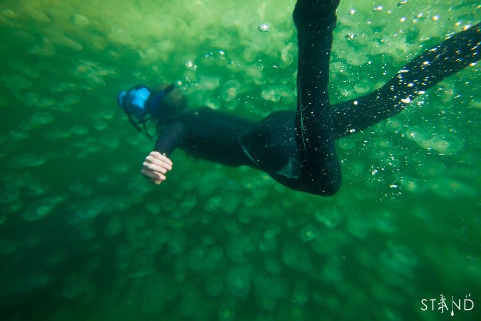outex-camera-underwater