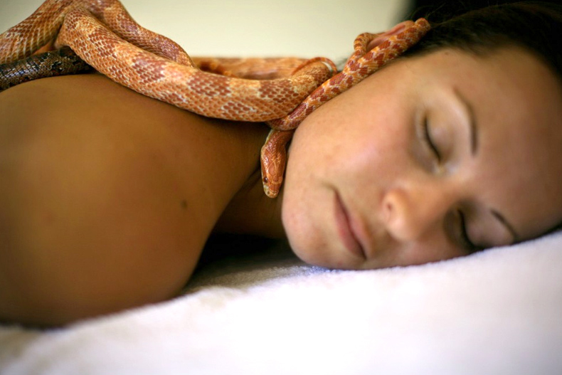 ada barak's snake massage spa israel