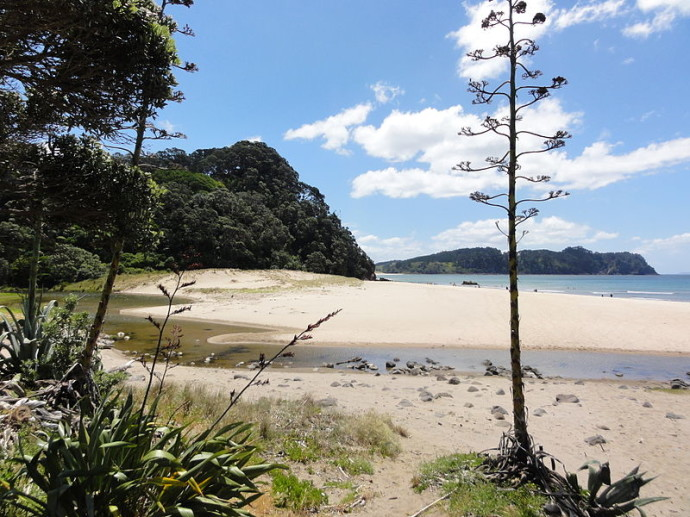 800px-View_to_hot_water_beach_2
