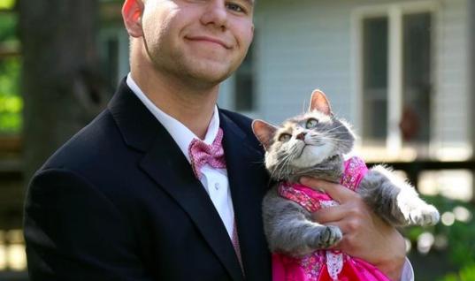 Funny Prom Memes