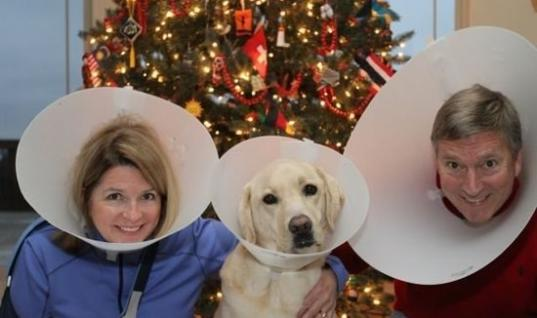 Very Awkward Photos Of Pets And Their Owners Check Out These Awkward Pet And Owner Photos, Here's Some Photos Of Pets And Their Owners That Will Make You Laugh, 14 Pets And Their Owners That Will Make You Laugh, 14 Owners And Their Pets That Will Make You Laugh, 14 Photos That Show Pets Embarrassed By Their Owners In Their Family Photos, Pets And Their Owners Pose For Family Photos To Create Very Awkward Situations., 14 Photos To NOT Include In The Christmas Letter This Year, 14 Pet And Owner Photos That Would NOT Be Great For Christmas Cards, What Happens When You Put 14 Owners And Their Pets In A Really Bad Photo?  Find Out Here