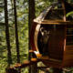 Treehouses of Your Childhood Dreams