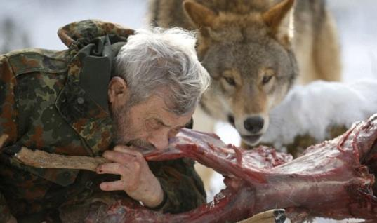 79 Years-Old Man Lives Among Wolves, Becomes The Alpha Male