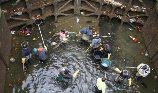 Paris Drains Iconic Canal – What They Found At The Bottom Was Truly Extraordinary!