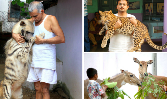 Man Rescues Hundreds Of Animals And Builds His Very Own Animal Ark