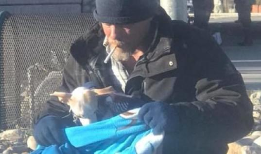 Homeless Man Helps Abandoned Chihuahua Find A Forever Home