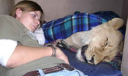 Woman Sleeps Every Night With This Deadly Animal In Her Bed