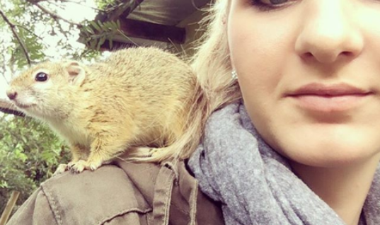 Squirrel Returns To Her Savior To Give Her An Amazing Gift
