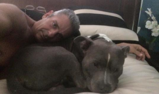 Man Tearfully Reunites With His Stolen Pitbull Just Two Days Before He Was Going To Be Euthanized