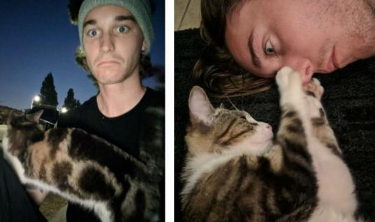 Stray Cat Follows Man Home And Decides She's Never Leaving